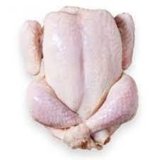 مرغ شیرکوه یزد